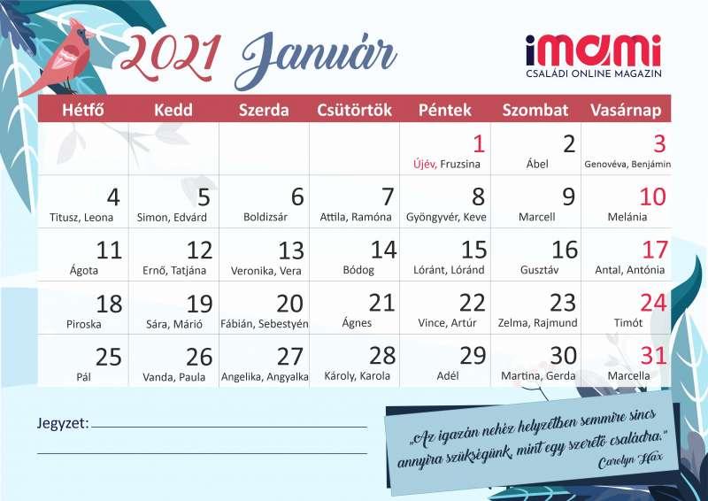 2021. január fogyás naptár)