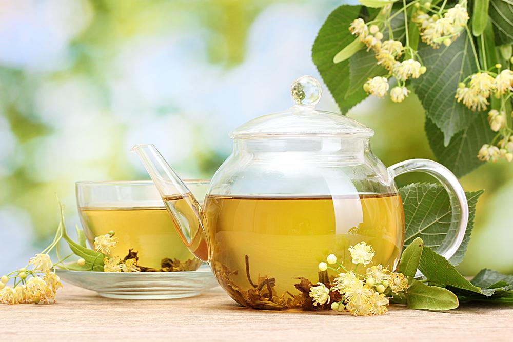 gyógynövények a fogyás tea