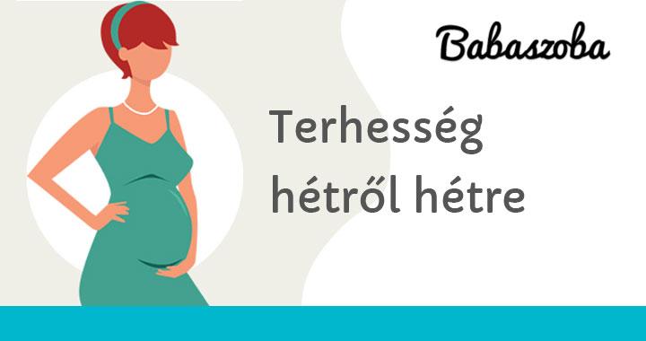 5 hetes terhes fogyhatok)