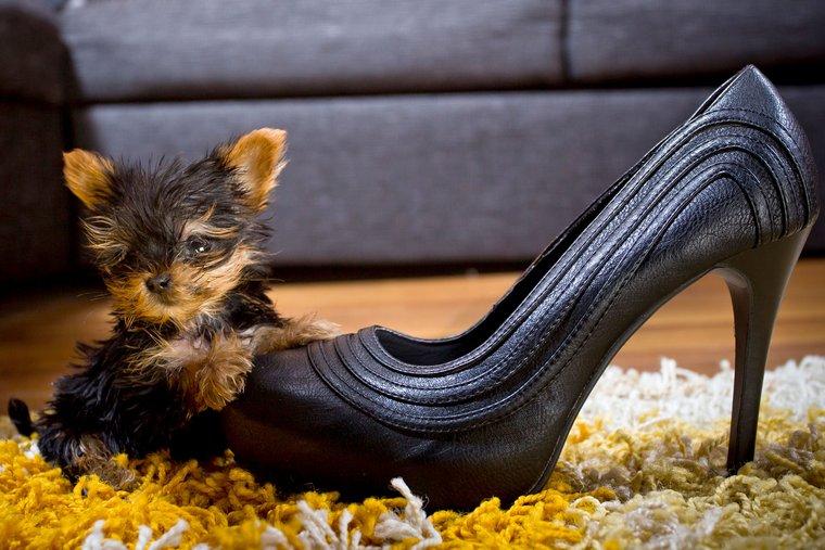 a fogyás megváltoztathatja-e a cipő méretét)