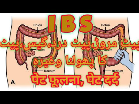 hasi zsírvesztés tippek urdu nyelven