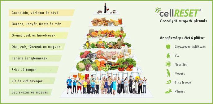 egészséges zsírégetők