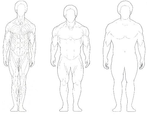 mezomorf testtípus zsírvesztés
