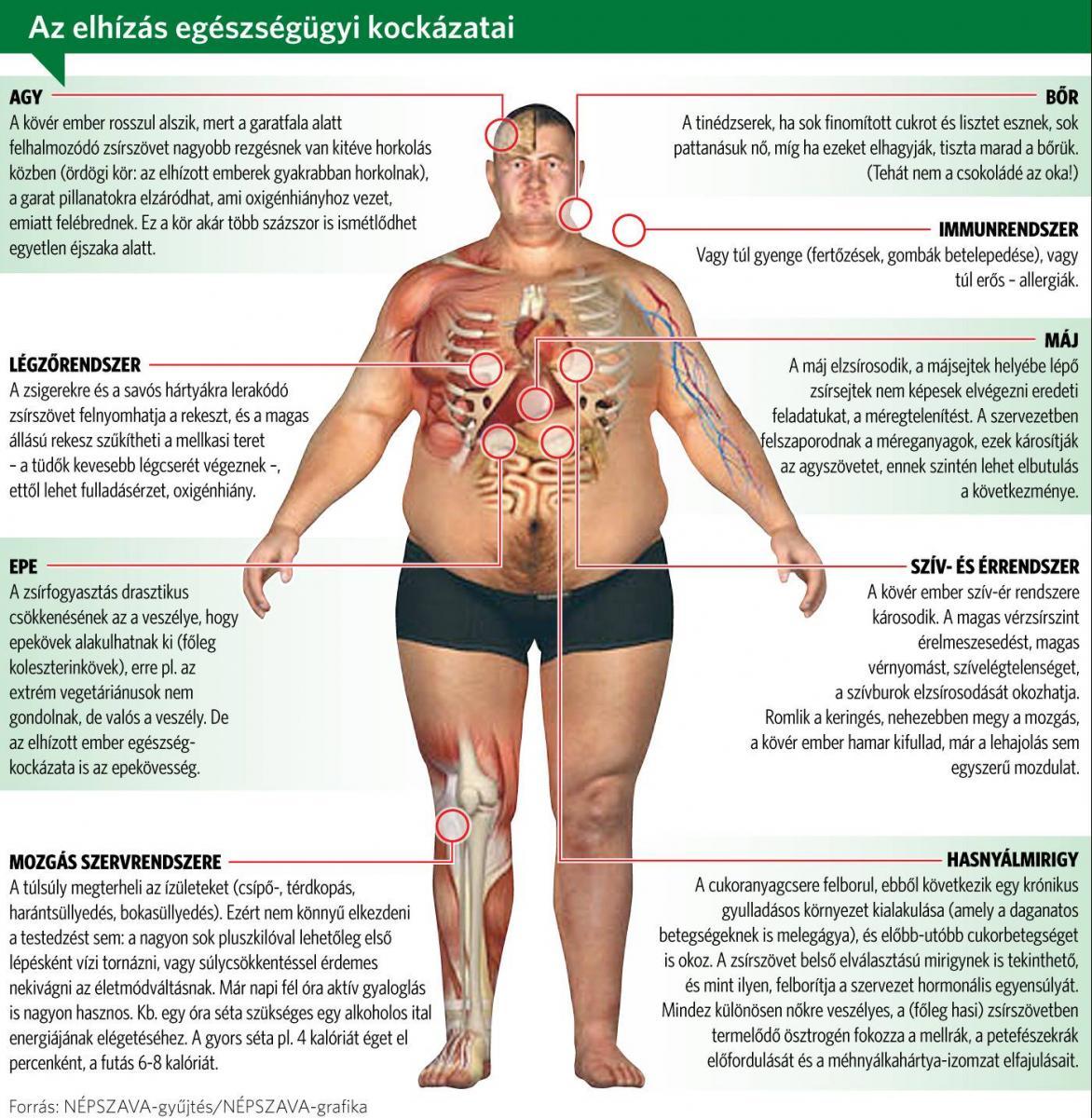 lefogy, ha elhízott