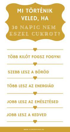 bob proctor fogyni)