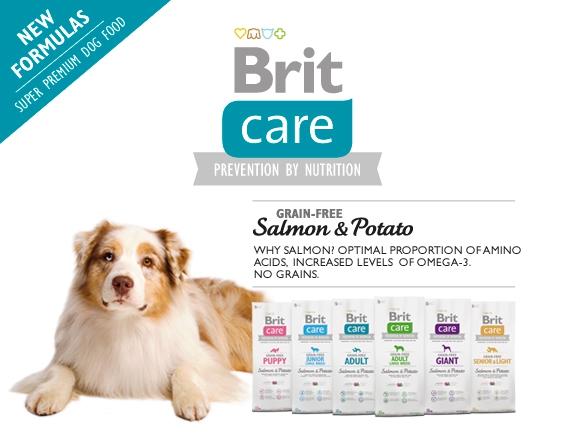 brit care fogyás nyúl