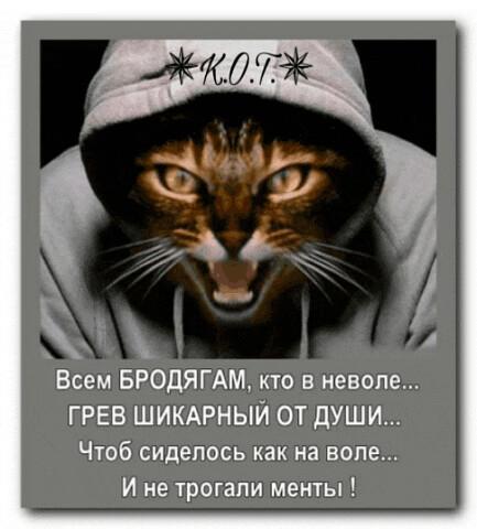 el akarom veszíteni a csípőm zsírját)