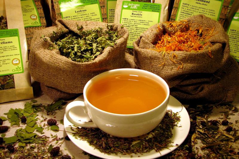 A zöld tea és a zsírégetés