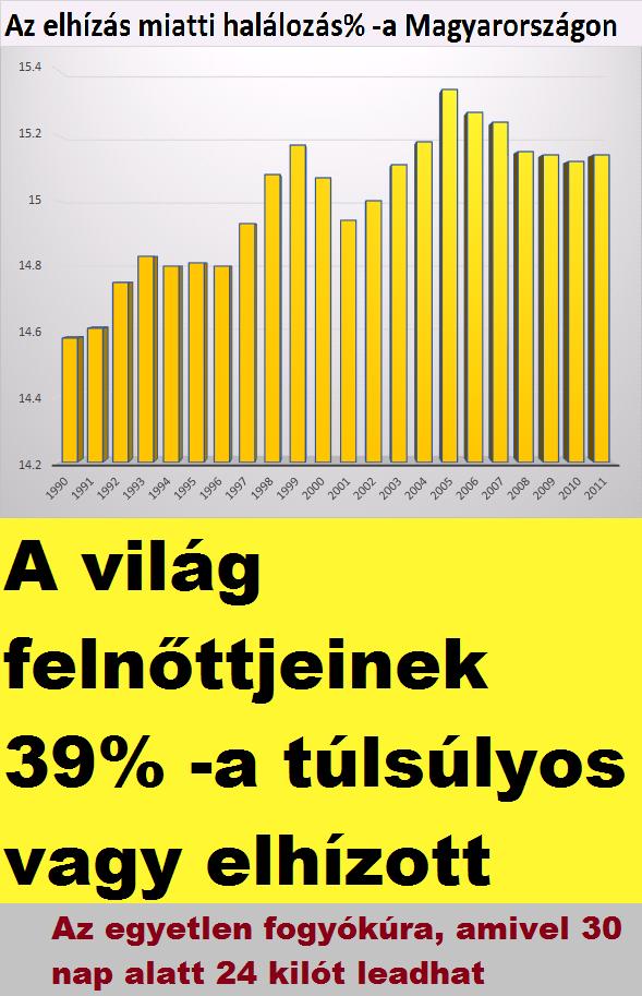 Napi kalóriaszükséglet kalkulátor   vakantiehuizen.hu - 76 font fogyás