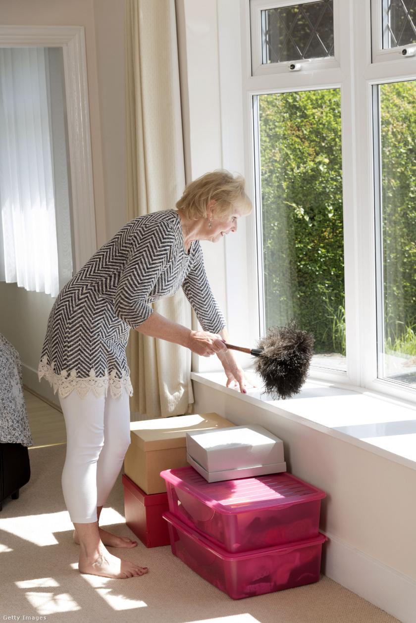 fogyni ház takarítás fogyás és vitalitás dc washington dc