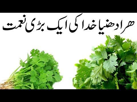 Pin by Ica Godáné on életmód | Beauty treatments, Beauty tips in urdu, Beauty