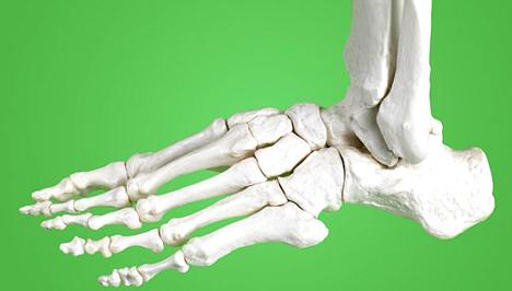 Csontváz fogyni