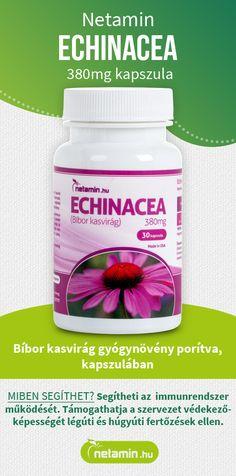 természetes gyógynövény zsírégetésre